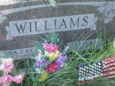 WILLIAMS, LESTER - Richland County, Ohio | LESTER WILLIAMS - Ohio Gravestone Photos