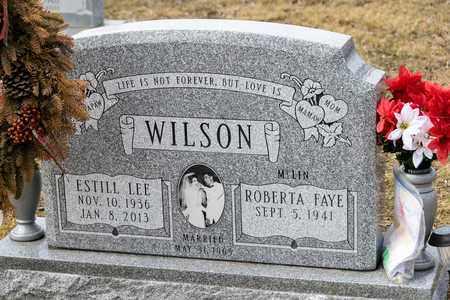 WILSON, ESTILL LEE - Richland County, Ohio | ESTILL LEE WILSON - Ohio Gravestone Photos