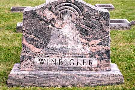 WINBIGLER, THAD S - Richland County, Ohio | THAD S WINBIGLER - Ohio Gravestone Photos