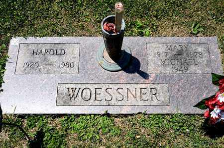WOESSNER, MARY - Richland County, Ohio | MARY WOESSNER - Ohio Gravestone Photos