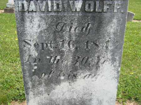 WOLFF, DAVID - Richland County, Ohio | DAVID WOLFF - Ohio Gravestone Photos