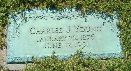 YOUNG, CHARLES J. - Richland County, Ohio | CHARLES J. YOUNG - Ohio Gravestone Photos