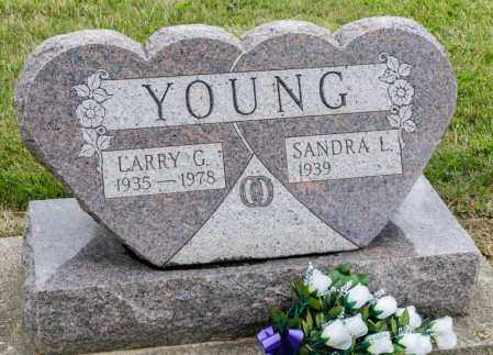 YOUNG, LARRY G - Richland County, Ohio | LARRY G YOUNG - Ohio Gravestone Photos