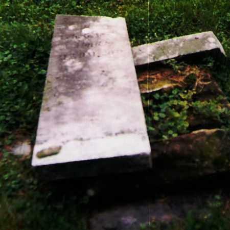YOUNG, LOUISA - Richland County, Ohio   LOUISA YOUNG - Ohio Gravestone Photos