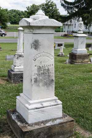 ZEIGLER, HENRY - Richland County, Ohio | HENRY ZEIGLER - Ohio Gravestone Photos