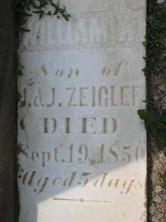 ZEIGLER, WILLIAM W - Richland County, Ohio | WILLIAM W ZEIGLER - Ohio Gravestone Photos