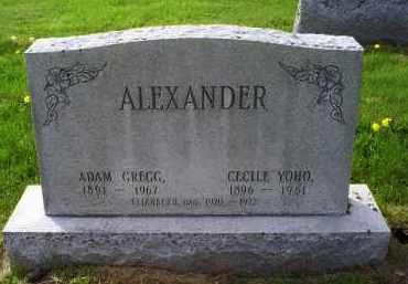 ALEXANDER, ADAM GREGG - Ross County, Ohio | ADAM GREGG ALEXANDER - Ohio Gravestone Photos
