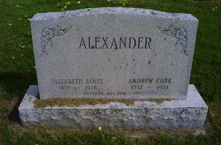 ALEXANDER, ANDREW CORK - Ross County, Ohio | ANDREW CORK ALEXANDER - Ohio Gravestone Photos