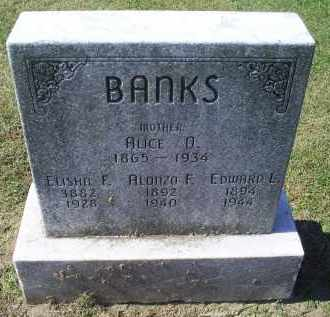 BANKS, ELISHA F. - Ross County, Ohio | ELISHA F. BANKS - Ohio Gravestone Photos