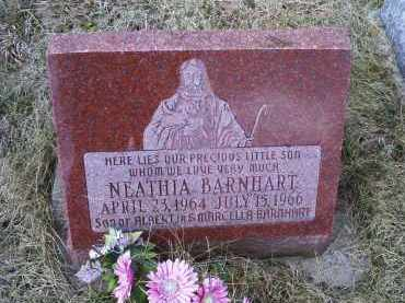 BARNHART, NEATHIA - Ross County, Ohio | NEATHIA BARNHART - Ohio Gravestone Photos