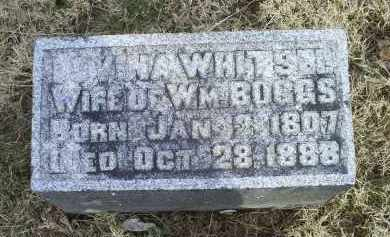 WHITSEL BOGGS, LOVINA - Ross County, Ohio | LOVINA WHITSEL BOGGS - Ohio Gravestone Photos