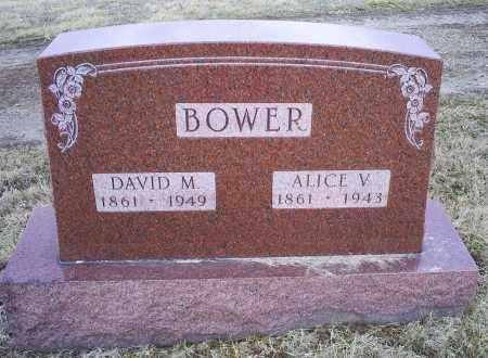 BOWER, DAVID M. - Ross County, Ohio | DAVID M. BOWER - Ohio Gravestone Photos