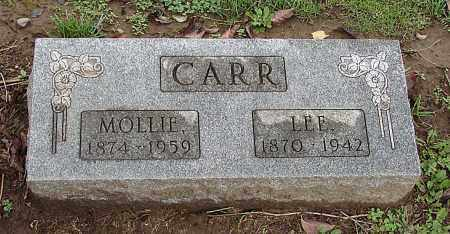 CASTLE CARR, MOLLIE - Ross County, Ohio | MOLLIE CASTLE CARR - Ohio Gravestone Photos
