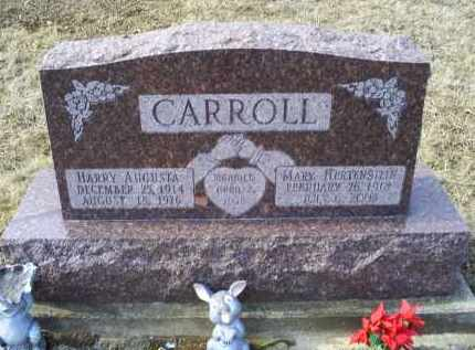 CARROLL, MARY - Ross County, Ohio | MARY CARROLL - Ohio Gravestone Photos