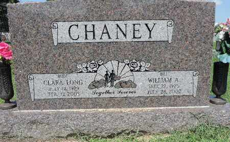 CHANEY, WILLIAM A - Ross County, Ohio | WILLIAM A CHANEY - Ohio Gravestone Photos