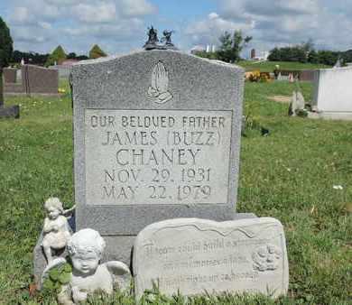 CHANEY, JAMES - Ross County, Ohio | JAMES CHANEY - Ohio Gravestone Photos