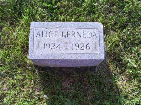 COY, ALICE BERNEDA - Ross County, Ohio | ALICE BERNEDA COY - Ohio Gravestone Photos