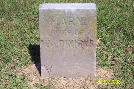 DIMKINS, MARY - Ross County, Ohio | MARY DIMKINS - Ohio Gravestone Photos