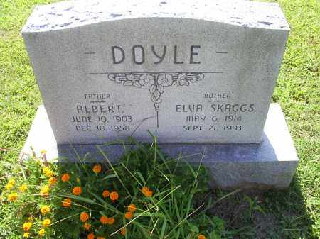 DOYLE, ALBERT - Ross County, Ohio | ALBERT DOYLE - Ohio Gravestone Photos