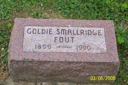 FOUT, GOLDIE - Ross County, Ohio | GOLDIE FOUT - Ohio Gravestone Photos