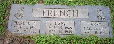FRENCH, LARRY - Ross County, Ohio | LARRY FRENCH - Ohio Gravestone Photos