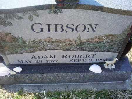 GIBSON, ADAM ROBERT - Ross County, Ohio | ADAM ROBERT GIBSON - Ohio Gravestone Photos