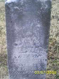 GOTSCHALL, LEVI - Ross County, Ohio | LEVI GOTSCHALL - Ohio Gravestone Photos