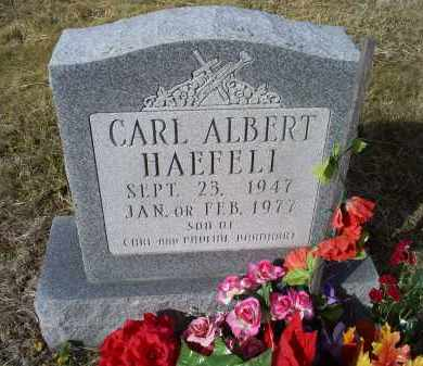 HAEFELI, CARL ALBERT - Ross County, Ohio | CARL ALBERT HAEFELI - Ohio Gravestone Photos