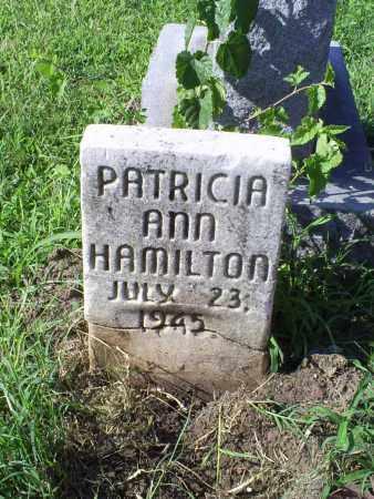HAMILTON, PATRICIA ANN - Ross County, Ohio | PATRICIA ANN HAMILTON - Ohio Gravestone Photos