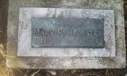 HARPSTER, MARY R. - Ross County, Ohio | MARY R. HARPSTER - Ohio Gravestone Photos
