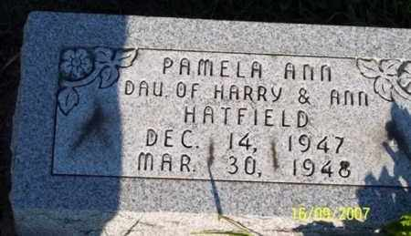 HATFIELD, PAMELA ANN - Ross County, Ohio | PAMELA ANN HATFIELD - Ohio Gravestone Photos