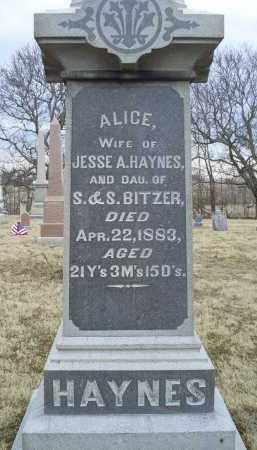 HAYNES, ALICE - Ross County, Ohio | ALICE HAYNES - Ohio Gravestone Photos