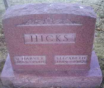 HICKS, ELIZABETH - Ross County, Ohio | ELIZABETH HICKS - Ohio Gravestone Photos
