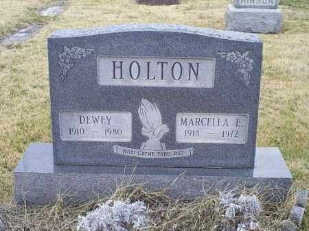 DRAY HOLTON, MARCELLA EILEEN - Ross County, Ohio | MARCELLA EILEEN DRAY HOLTON - Ohio Gravestone Photos