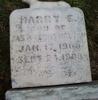 HOLTON, HARRY E. - Ross County, Ohio | HARRY E. HOLTON - Ohio Gravestone Photos