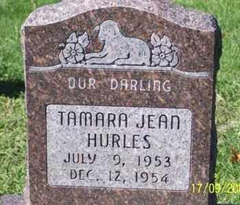 HURLES, TAMARA JEAN - Ross County, Ohio | TAMARA JEAN HURLES - Ohio Gravestone Photos