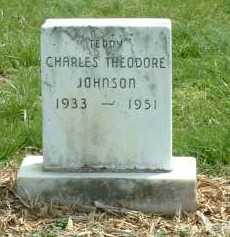 JOHNSON, CHARLES THEODORE - Ross County, Ohio | CHARLES THEODORE JOHNSON - Ohio Gravestone Photos
