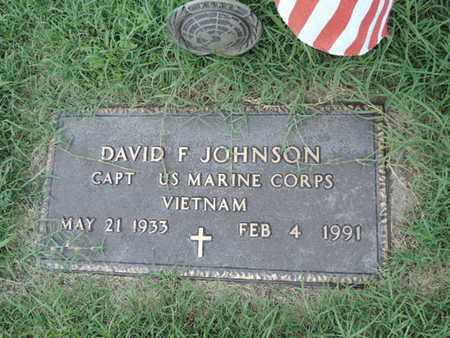 JOHNSON, DAVID F - Ross County, Ohio | DAVID F JOHNSON - Ohio Gravestone Photos