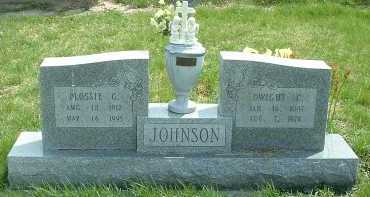 JOHNSON, FLOSSIE G. - Ross County, Ohio | FLOSSIE G. JOHNSON - Ohio Gravestone Photos