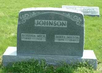 JOHNSON, JAMES MILTON - Ross County, Ohio | JAMES MILTON JOHNSON - Ohio Gravestone Photos