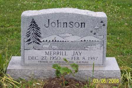JOHNSON, MERRILL JAY - Ross County, Ohio | MERRILL JAY JOHNSON - Ohio Gravestone Photos