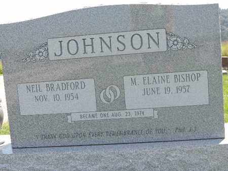 JOHNSON, NEIL BRADFORD - Ross County, Ohio | NEIL BRADFORD JOHNSON - Ohio Gravestone Photos