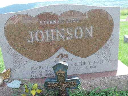 HALE JOHNSON, DARLENE E - Ross County, Ohio | DARLENE E HALE JOHNSON - Ohio Gravestone Photos