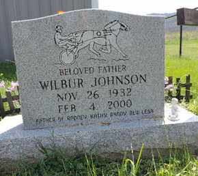 JOHNSON, WILBUR - Ross County, Ohio | WILBUR JOHNSON - Ohio Gravestone Photos