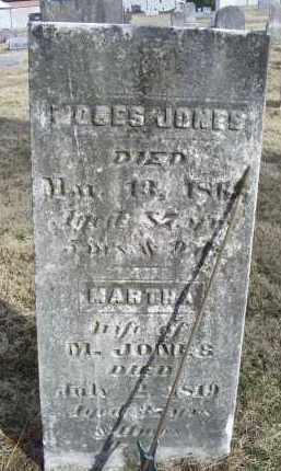 JONES, MARTHA - Ross County, Ohio | MARTHA JONES - Ohio Gravestone Photos