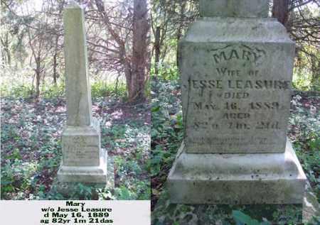 LEASURE, MARY - Ross County, Ohio   MARY LEASURE - Ohio Gravestone Photos