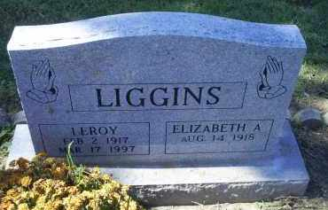 LIGGINS, LEROY - Ross County, Ohio | LEROY LIGGINS - Ohio Gravestone Photos