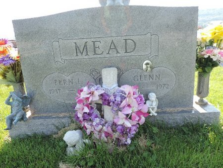 MEAD, FERN L - Ross County, Ohio | FERN L MEAD - Ohio Gravestone Photos