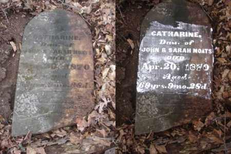 MOATS, CATHARINE - Ross County, Ohio   CATHARINE MOATS - Ohio Gravestone Photos