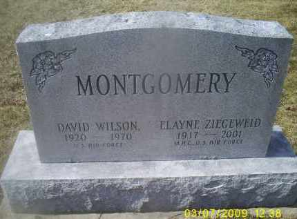 MONTGOMERY, ELAYNE - Ross County, Ohio | ELAYNE MONTGOMERY - Ohio Gravestone Photos